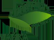 logo-Rus_Eng_chayka